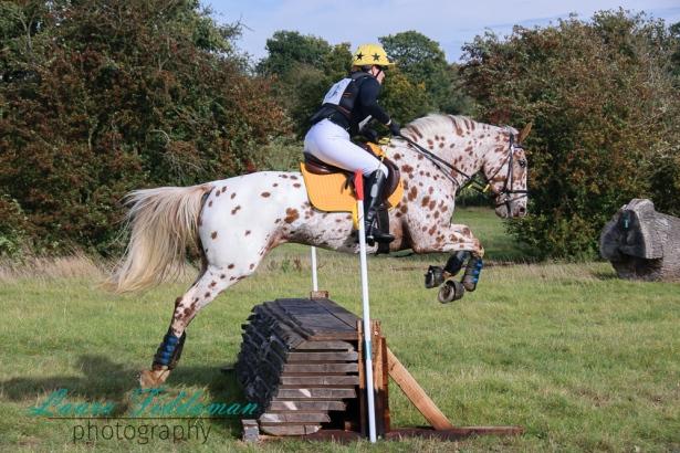 stratford-hills-hunter-16-10-2016-98