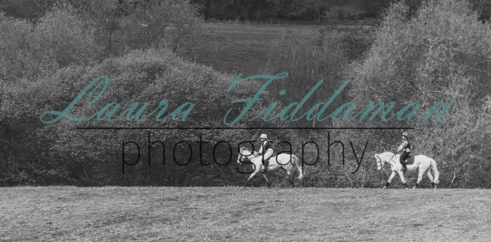 Stratford Hills Clear Round-3